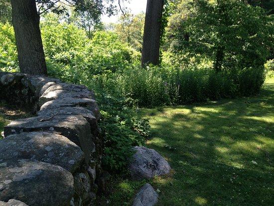 Waltham, MA: The grounds.
