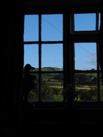 Fylingthorpe, UK: View across the fields from room 2