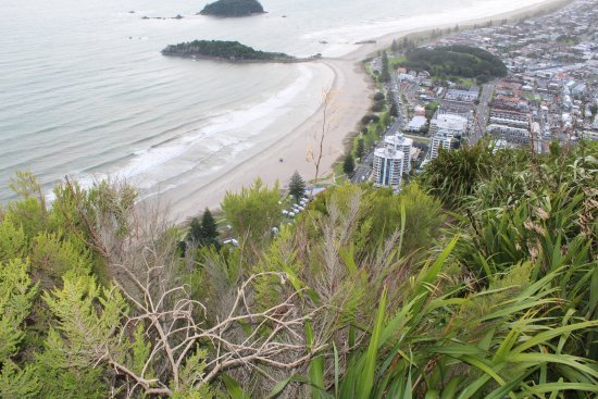 Mount Maunganui, New Zealand: Looking down at the campsite middle of photo