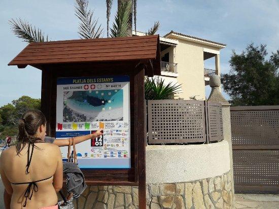 Playa dels Estanys