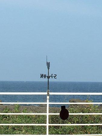 Muroto, Japonya: photo2.jpg