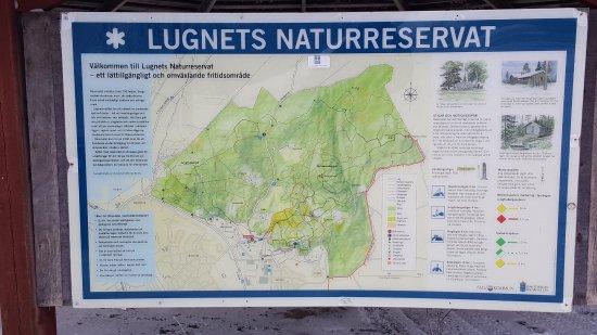 Lugnets Naturreservat Karta Picture Of Lugnet Falun Tripadvisor