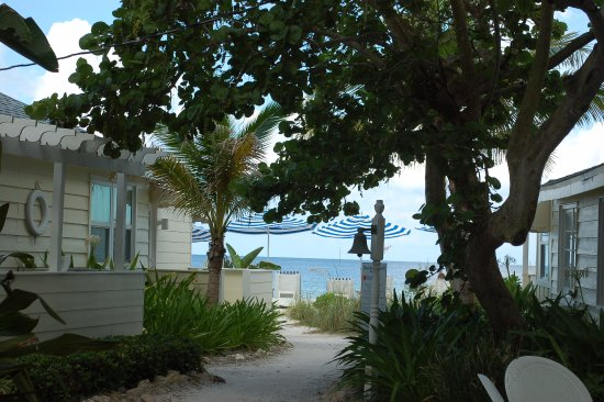 """Bungalow Beach Resort: View from our room, """"one row back"""" very lovely and well shaded area."""