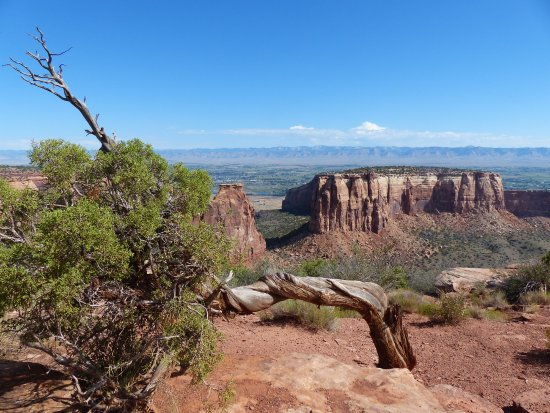 Fruita, CO: Deep canyons, weathered vegetation, and spectacular changes all within a 23 mile drive.