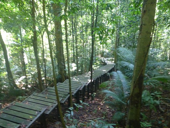 Mutiara Taman Negara: photo1.jpg
