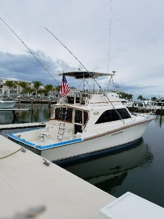 Fins and Sins Sport Fishing Charters