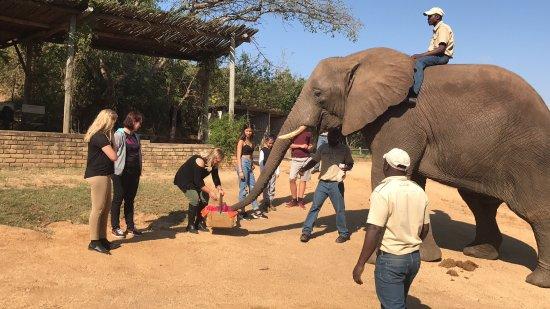 Hazyview, South Africa: photo0.jpg