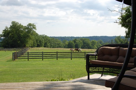 Batavia, OH: Back deck view of pastures