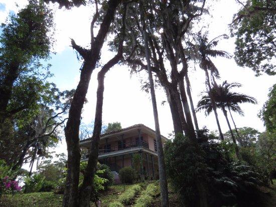 Popayan, Kolumbia: Casa con palmas