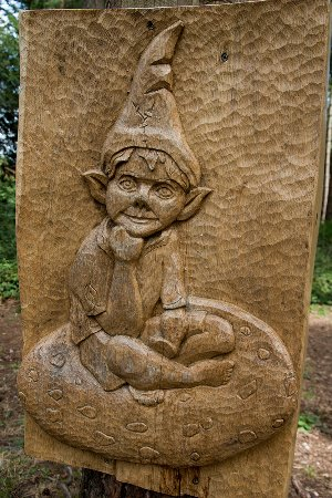 Farnham, UK: Carving at the park on the Timberline Trail