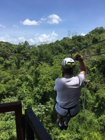 Cayo, เบลีซ: Out over the jungle!