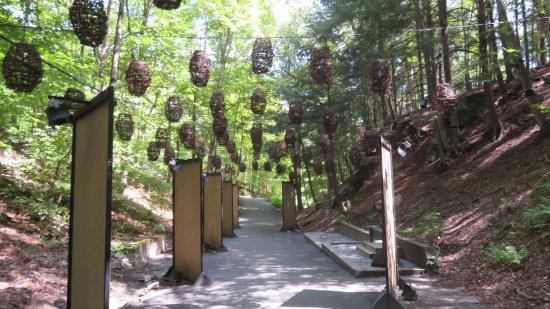 Parc de la Gorge de Coaticook: L'entrée du sentier