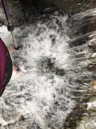 Salt Springs State Park: we'd just had a recent storm - the water was rushing!