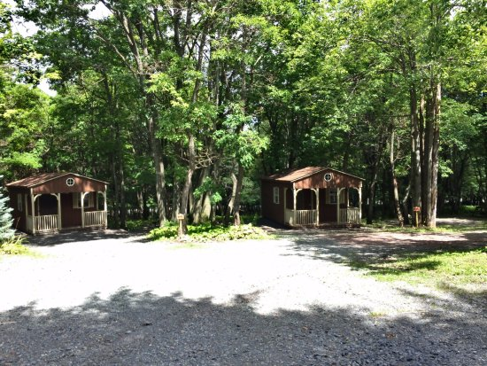 Cabins Picture Of Peaceful Woodlands Family Campground Blakeslee