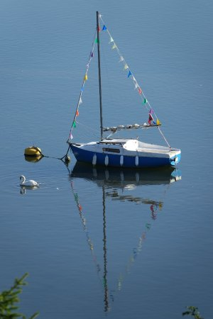Golant, UK: Calm mooring - taken from our balcony.