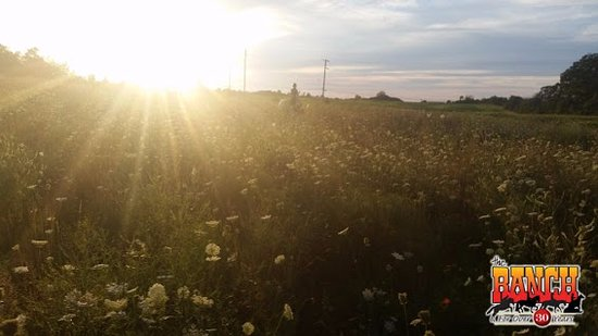 Oakville, Canadá: Scenic View