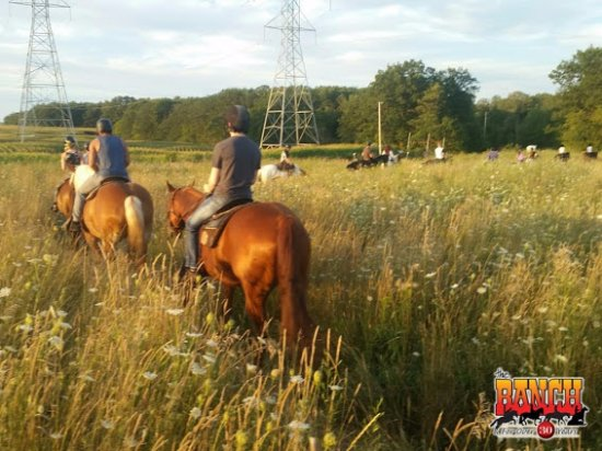 Oakville, Canadá: Our trail ride group