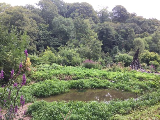 St Austell, UK: The Lost Gardens of Heligan