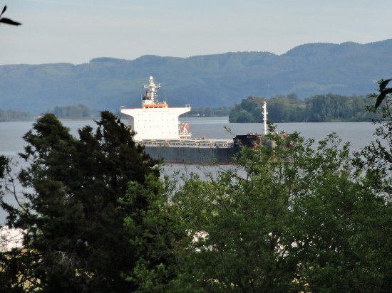Skamokawa, WA: View of a Ship Passing taken from Yurt