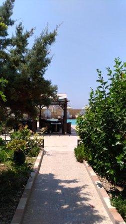 Arkasa Bay Hotel: vialetto d'ingresso