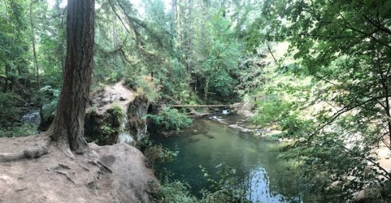 Whatcom Falls Park: quiet