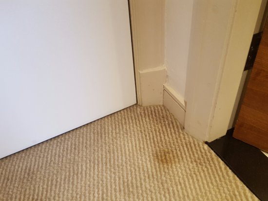 Thistle Kensington Gardens: Carpet was stained and a bit shabby