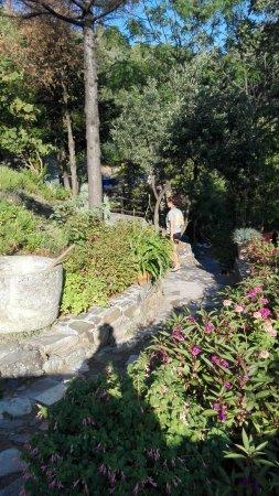 Milia Mountain Retreat照片