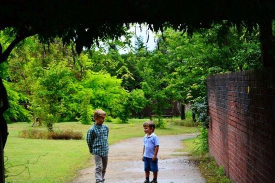 Bellfarm : Vast lawns & gardens at Bell Farm