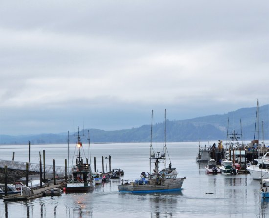 Garibaldi, OR: Fishing Boats