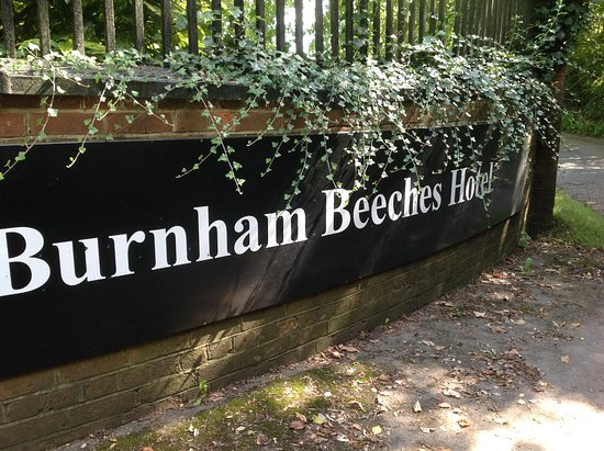 Burnham, UK: Gorgeous Grounds but very poor Afternoon Tea