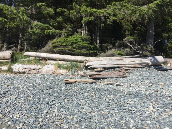 Sooke, Canadá: French Beach Provincial Park