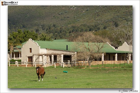 Riebeek-West, South Africa: View of the accomodation at Pulpit Rock