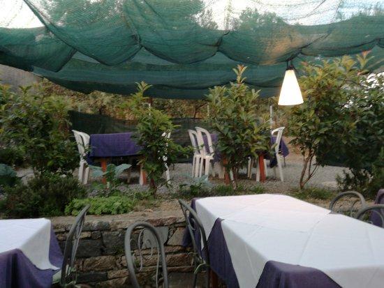 Volastra, Italie : Gli Ulivi