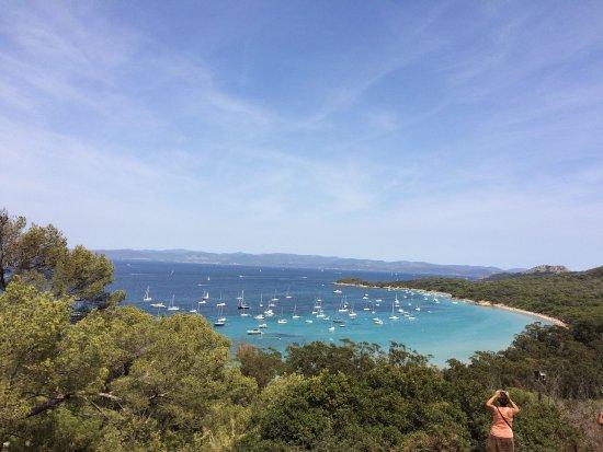 Porquerolles Island, France: photo5.jpg