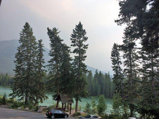包湖景觀酒店張圖片