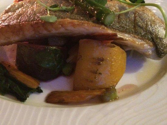 Crewkerne, UK: Sea bass