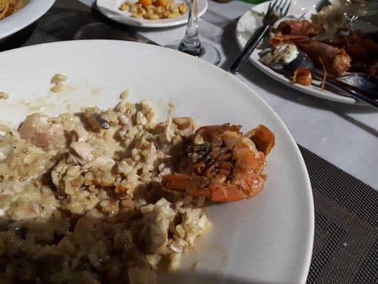 Premier Restaurant: TA_IMG_20170816_220649_large.jpg