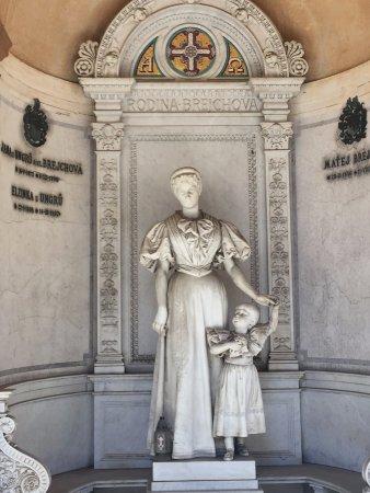 Národní Kulturní Památka Vyšehrad: Zabytkowy cmentarz