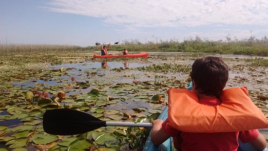 Carlos Pellegrini, Argentina: Kayak con yacarés