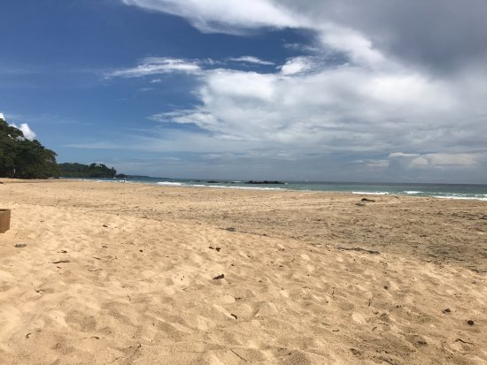Isla Bastimentos照片