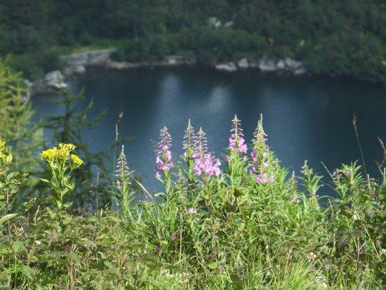Caderzone Terme, Italy: Lago di Vacarsa3