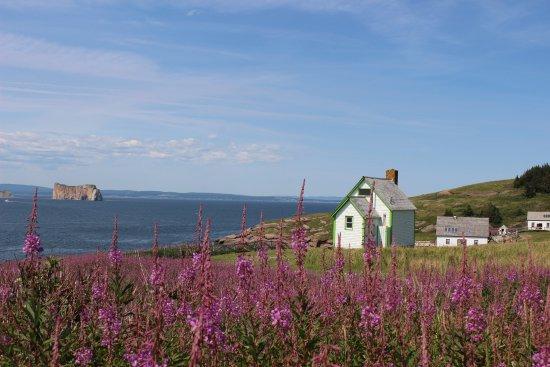 Perce, Canada: Vue superbe avec les fleurs