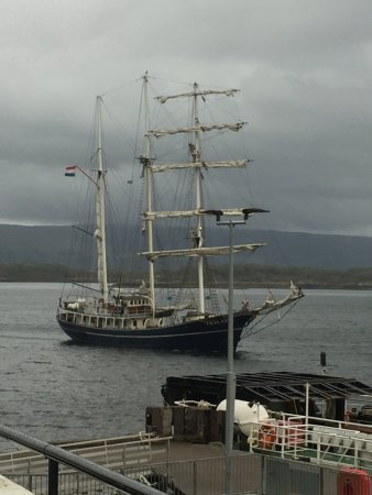 Cafe Fish : Tall ship motors into Tobermory harbour