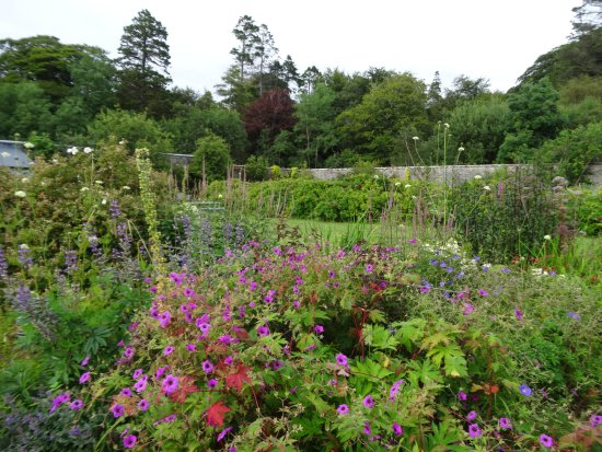 Applecross, UK: Une partie du jardin