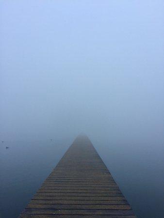 Ouderkerk aan de Amstel, The Netherlands: Romantic fog