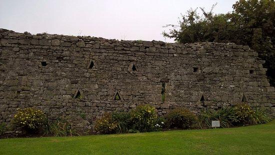 Manorbier Castle: Randomly pretty walls