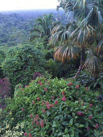 Copal Tree Lodge, a Muy'Ono Resort Foto