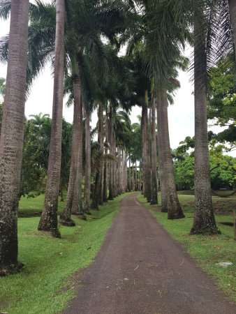 Le Francois, Martinik: photo3.jpg