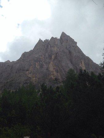San Martino di Castrozza, إيطاليا: Palaronda Trek