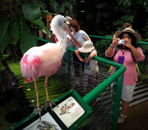 National Zoological Park : photo1.jpg